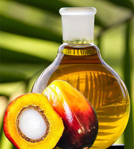 palm tree oil health benefits